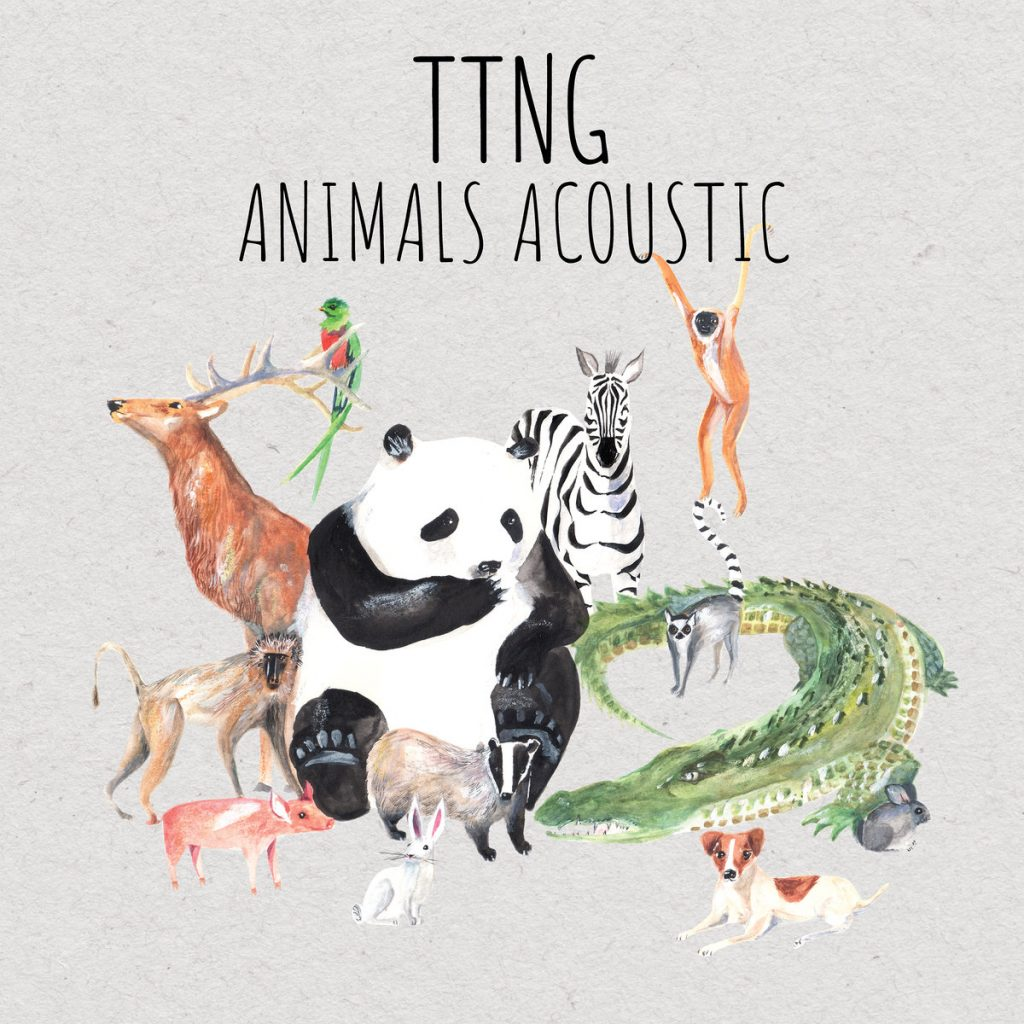 Review: TTNG – Animals Acoustic