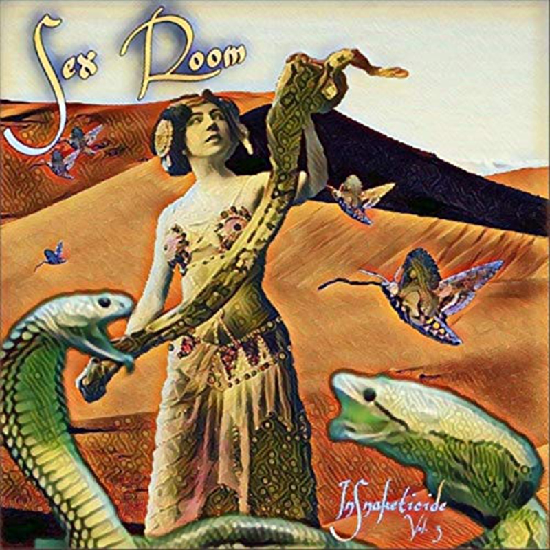 Local Review: Sex Room – InSnaketicide