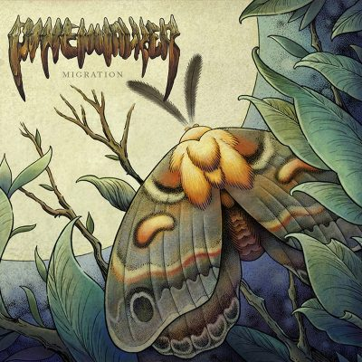 Pinewalker | Migration | Self Released