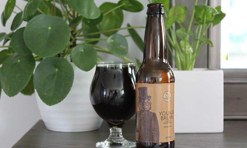 """""""Young Bruin pours with the color of deep amber and dark-garnet undertones."""""""