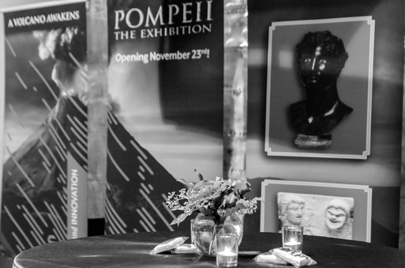 The Pompeii Gala was beautifully decorated by The Leonardo.