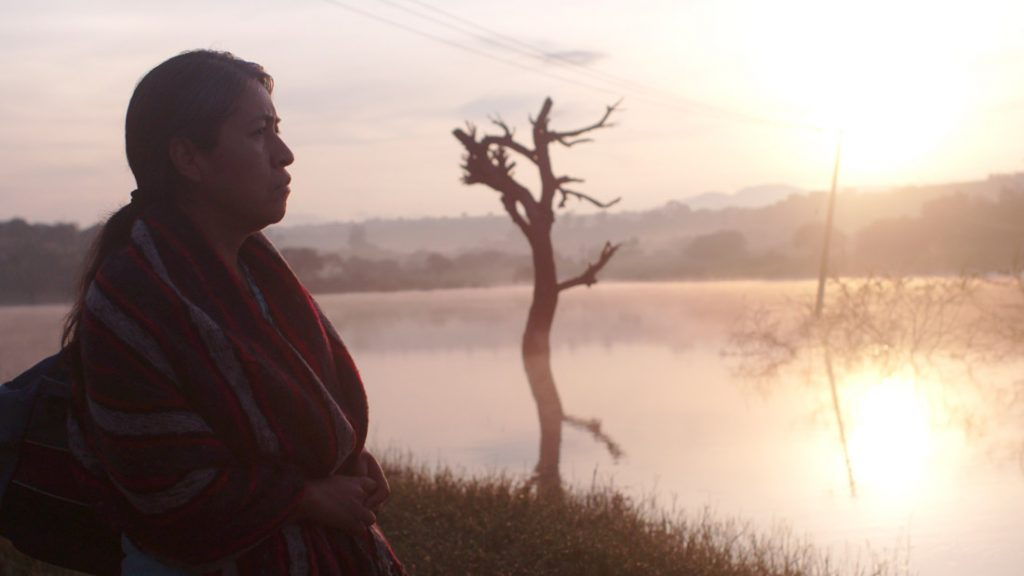 Sundance Film Review: Identifying Features (Sin Señas Particulares)