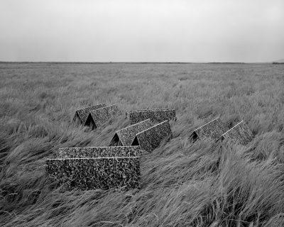"Levi Jackson, Landscaper, 2019, 35x44"" Inkjet Print, from Jackson's portfolio."