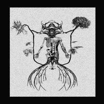 Harvest of Ash | Deadlights | Self-Released