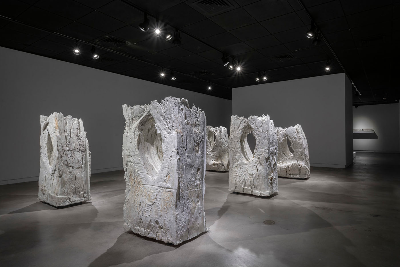The uniqueness of Brad Evan Taylor's Growing Rocks relies on the relationship between time, nature and our own knowledge.