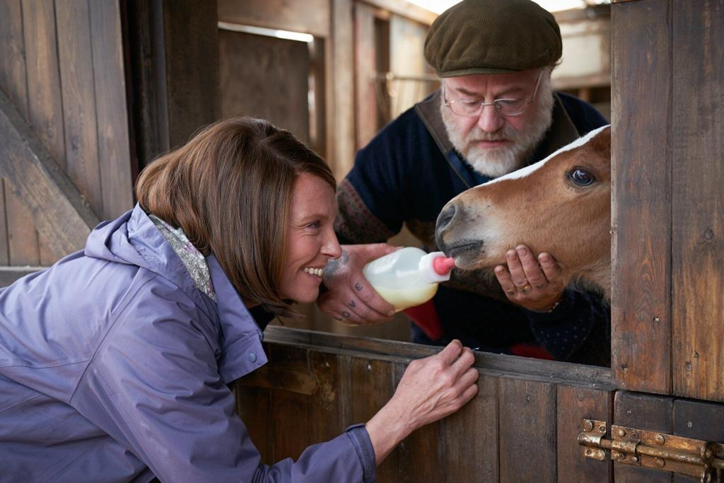 Dream Horse tells the true story of small-town bartender Jan Vokes who decides to breed racehorses.