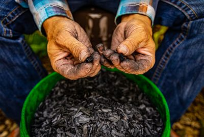 In simple terms, biochar is a refined charcoal product.