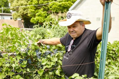 For Al Grossi, the ideas of farming and punk rock aren't all that different.